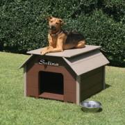 Luxury Small Dog House