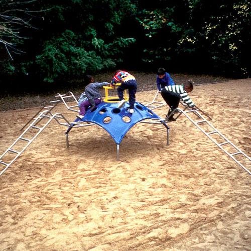 Charlotte the Spider Playground