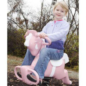 Pink Pony Spring Rider Kit