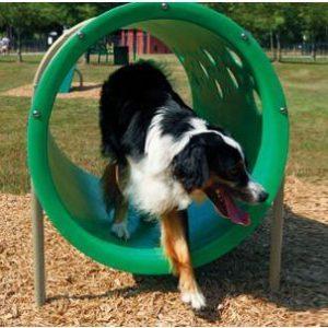 Dog Tunnels