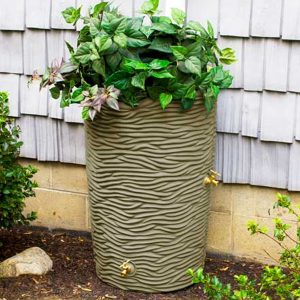 Impressions Palm 50 Gallon Rain Barrel