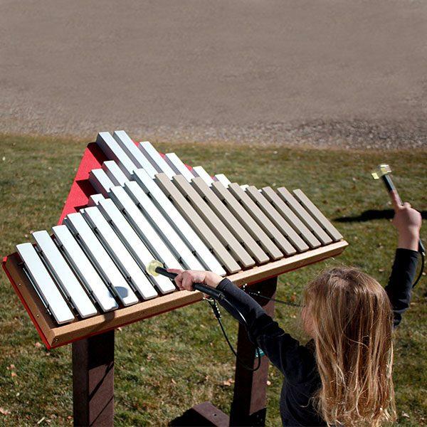 Duet Musical Play Equipment