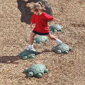 Stepping Turtles Set