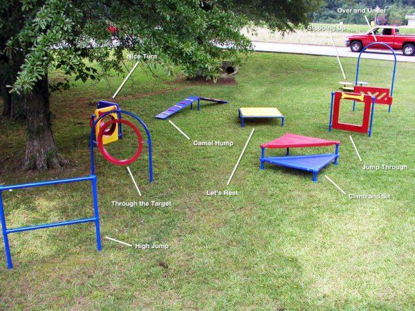 Fido Park Obstacle Course