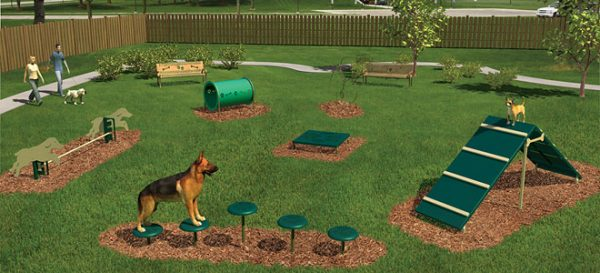 Intermediate Dog Obstacle Course