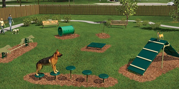 p-51149-intermediate_2.jpg - Intermediate Dog Obstacle Course