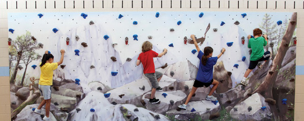 Mural Climbing Wall Package