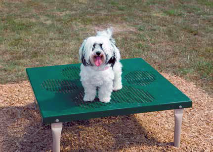 Paws / Grooming Table
